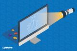 3 Schritte gegen Schatten-IT: Schattengewächse und ihre Früchte