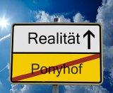 Das Internet ist kein Ponyhof: Leichtsinn im Web