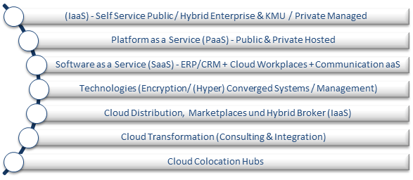 Cloud Vendor Benchmark 2015 Segmente
