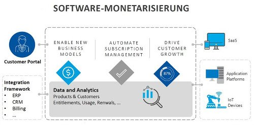Software-Monetarisierung