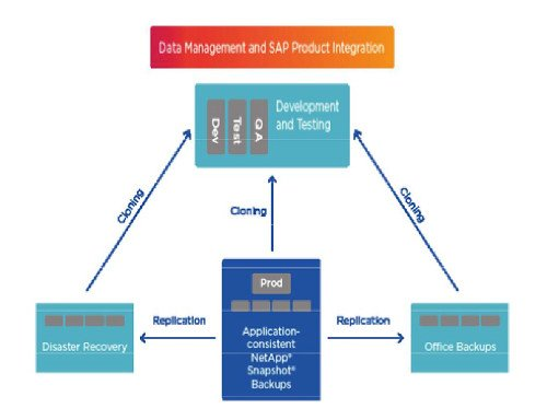 IGZ SAP Lifecycle Management