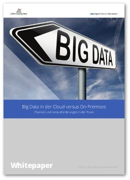 Whitepaper Big Data in der Cloud versus On-Premises