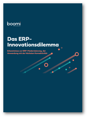 Whitepaper ERP-Innovationsdilemma